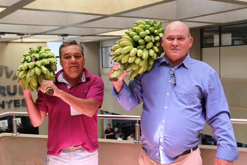 Banana neles!