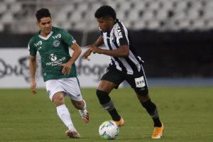 Goiás tenta vencer Botafogo para continuar na luta por permanência