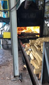 Polícia Civil incinera mais de 400kh de drogas em Nova Andradina