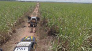 PRF apreende mais de uma tonelada de maconha em Paranaíba (MS)